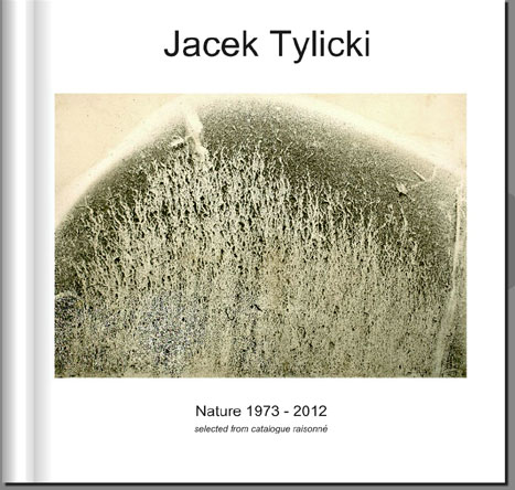 Tylicki Catalogue Raisonne cover